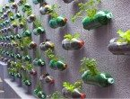 Model Taman Minimalis Dinding Bahan Bekas Botol